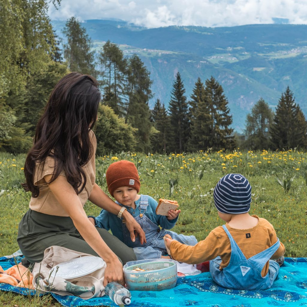 Picnic in the mountains with children
