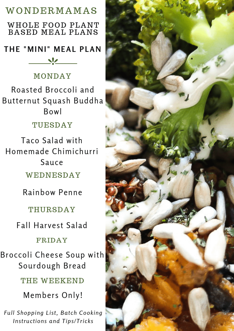 9/18/19 Whole Food Plant Based Meal Plan