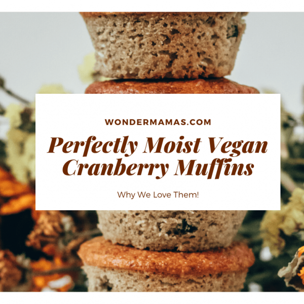 perfect vegan cranberry muffins